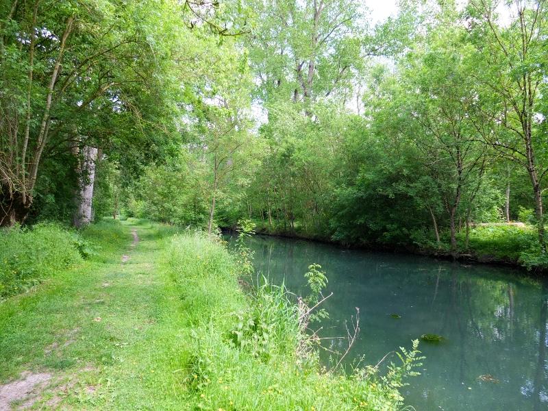 Sentier pédestre le long de la Rigole d'Aziré dans le Marais Poitevin