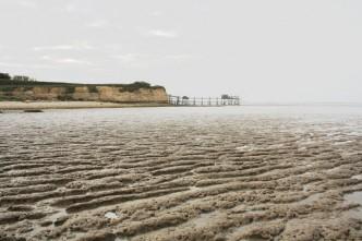 La pointe saint clément et la baie de l'aiguillon en charente-maritime