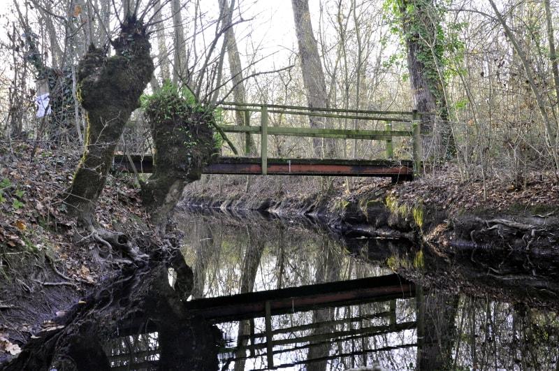 pont-du-marais-mouille-a-doix