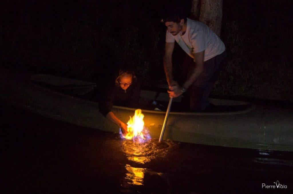 feu sur l'eau marais venise verte