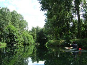 La Sèvre Niortaise entre le barrage du Marais Pin et Magné
