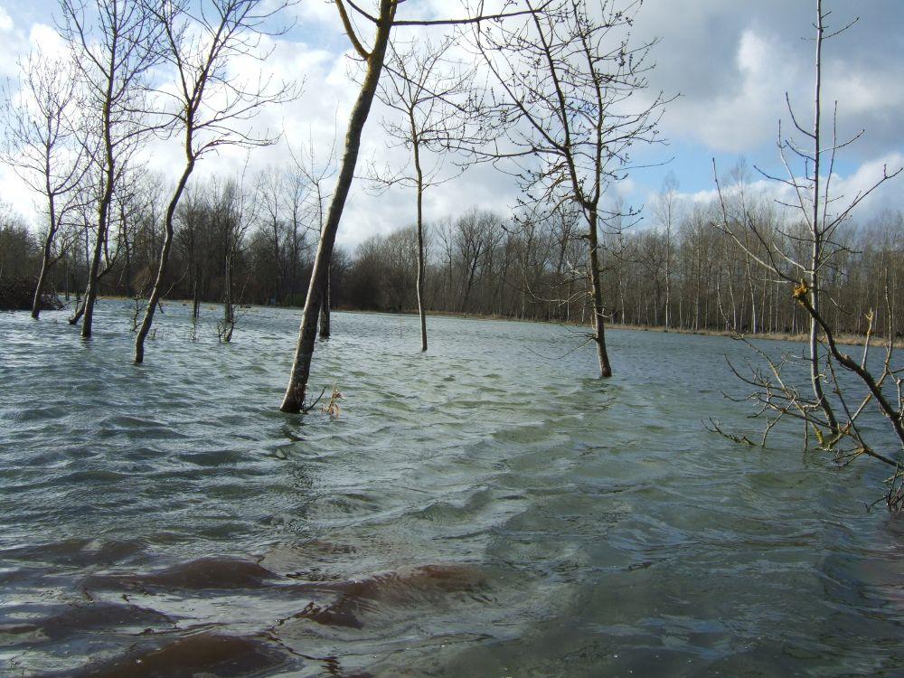 Diaporama du Marais Poitevin avant et après la crue hivernale dans la Venise Verte