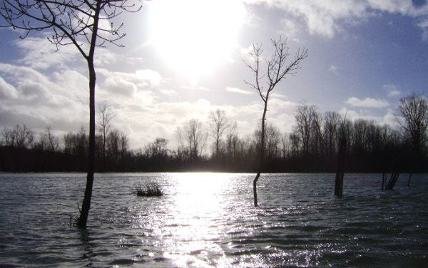 Crues hivernales dans la Venise Verte