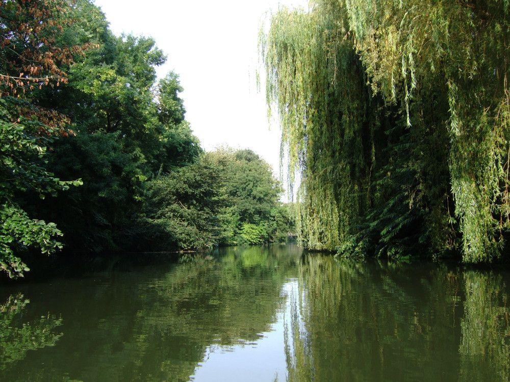 8-Niort-après-le-Pont-Main