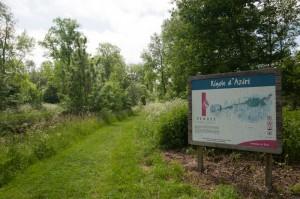 Panneau explicatif sur le Marais Poitevin au niveau de la Rigole d'Aziré