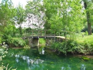 Pont le long de la Rigole d'Aziré dans la Venise verte