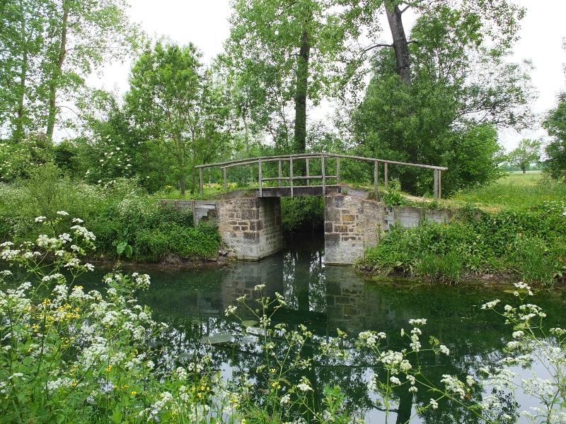 Pont pédestre dans le Marais Poitevin le long de la Rigole d'Aziré