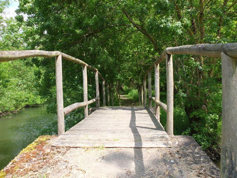 Pont pédestre dans le Marais Poitevin à Aziré