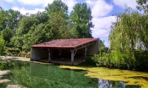 Aziré – Balade à pied dans le Marais Poitevin