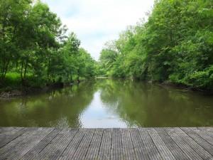 Ponton au niveau de la pêcherie d'Aziré dans le Marais Poitevin