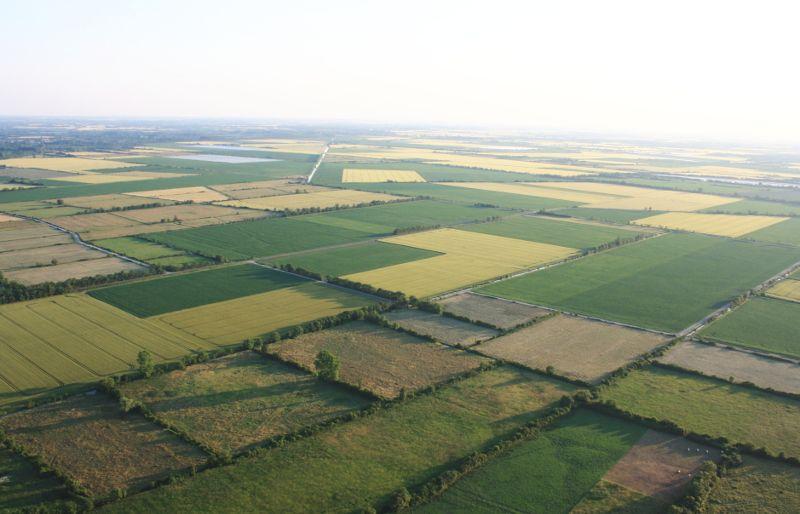 Le marais desséché entre Maillezais et Doix