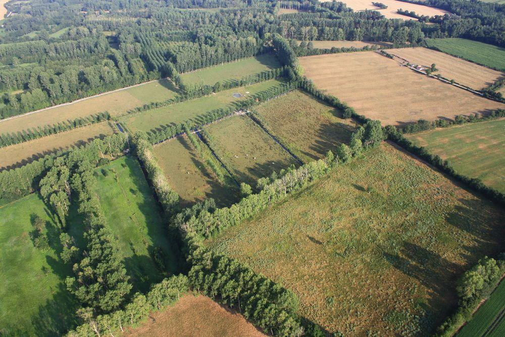 1-Marais-Poitevin-proche-de-Le-Vanneau