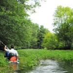 Exoudun à Niort, la Sèvre Niortaise en kayak