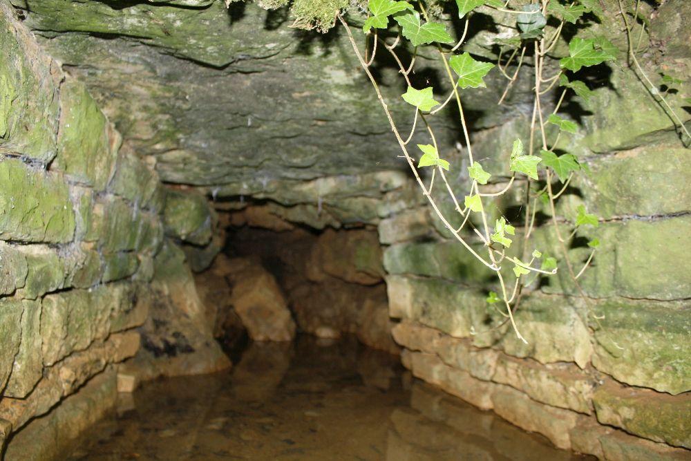 Une des sources de la Sèvre Niortaise à Sepvet