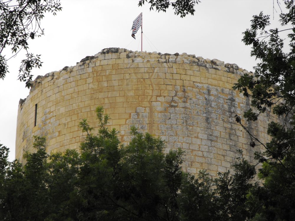 Tour du Chateau du Coudray Salbart