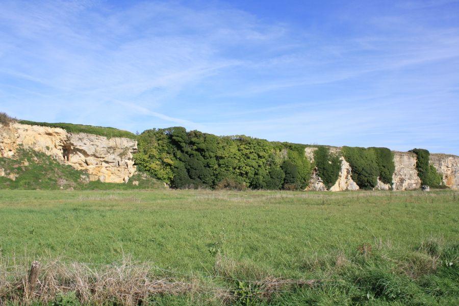 Falaises-Ile-de-la-Dive-Vendée