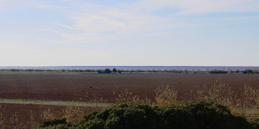Ile-de-la-Dive-Aiguillon-sur-mer