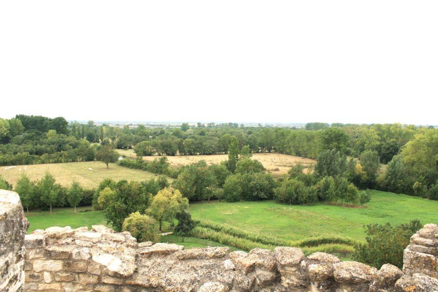 vue-sur-venise-verte-depuis-abbaye-de-maillezais