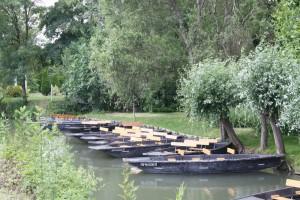 embarcadère à coulon marais poitevin