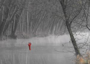 légende du bras rouge dans le marais poitevin