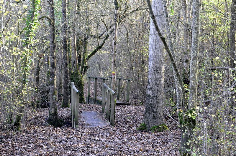 petits ponts de bois sentier billaude dois marais poitevin