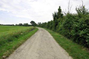 chemin de campagne gué de velluire