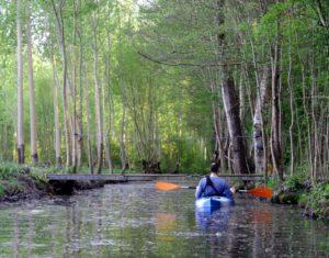 kayak pont marais poitevin amuré