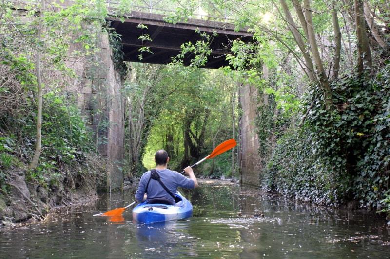 pont port saint georges de rex marais poitevin