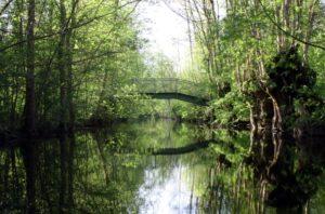 pont rigole rimonboeuf marais amuré