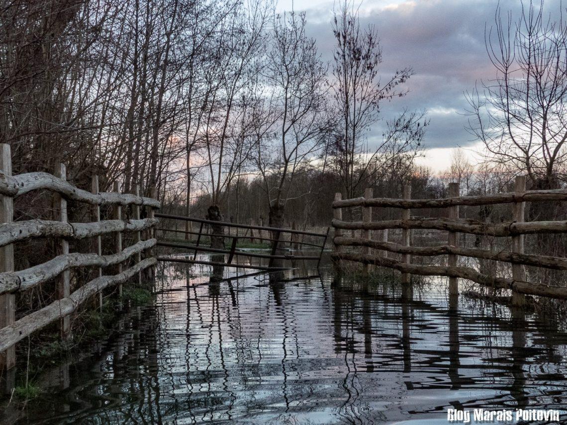 inondation marais poitevin 2018