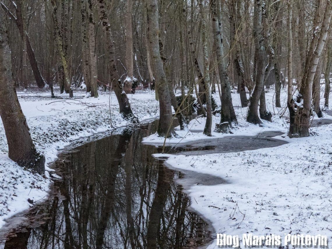 Canal marais poitevin gelée 2018