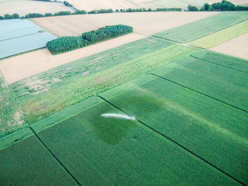 irrigation maïs marais poitevin