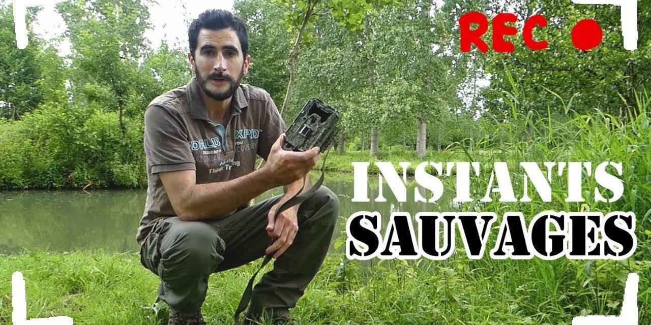 Instants sauvages – Excursion dans le Marais Poitevin