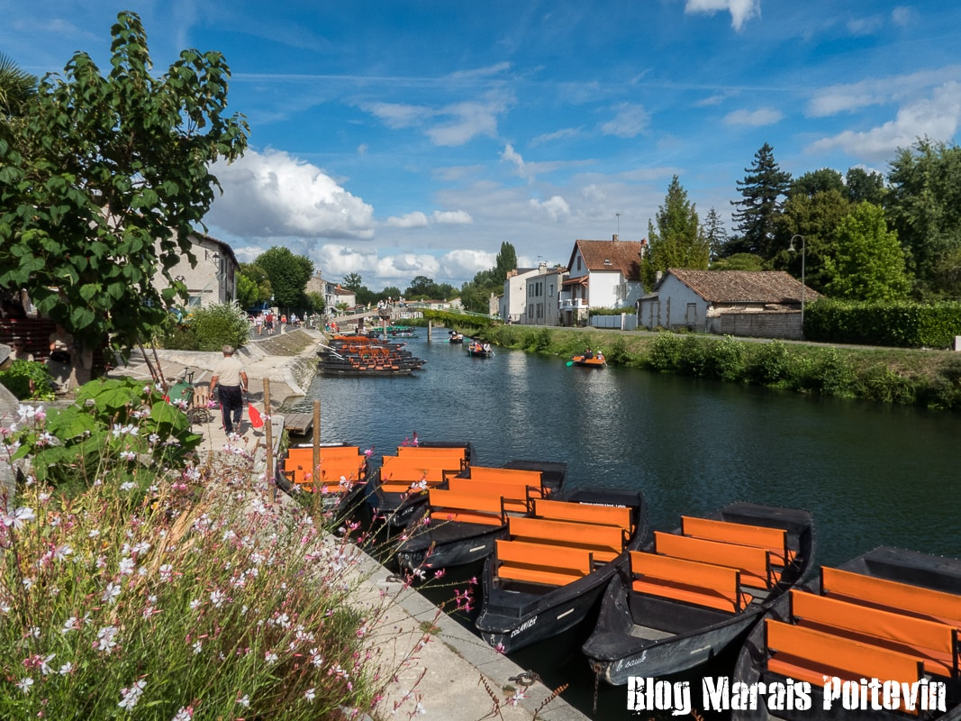 photo marais poitevin coulon aout 2018