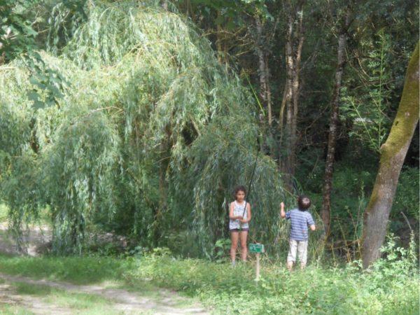 peche enfants éco camping la frenaie marais poitevin