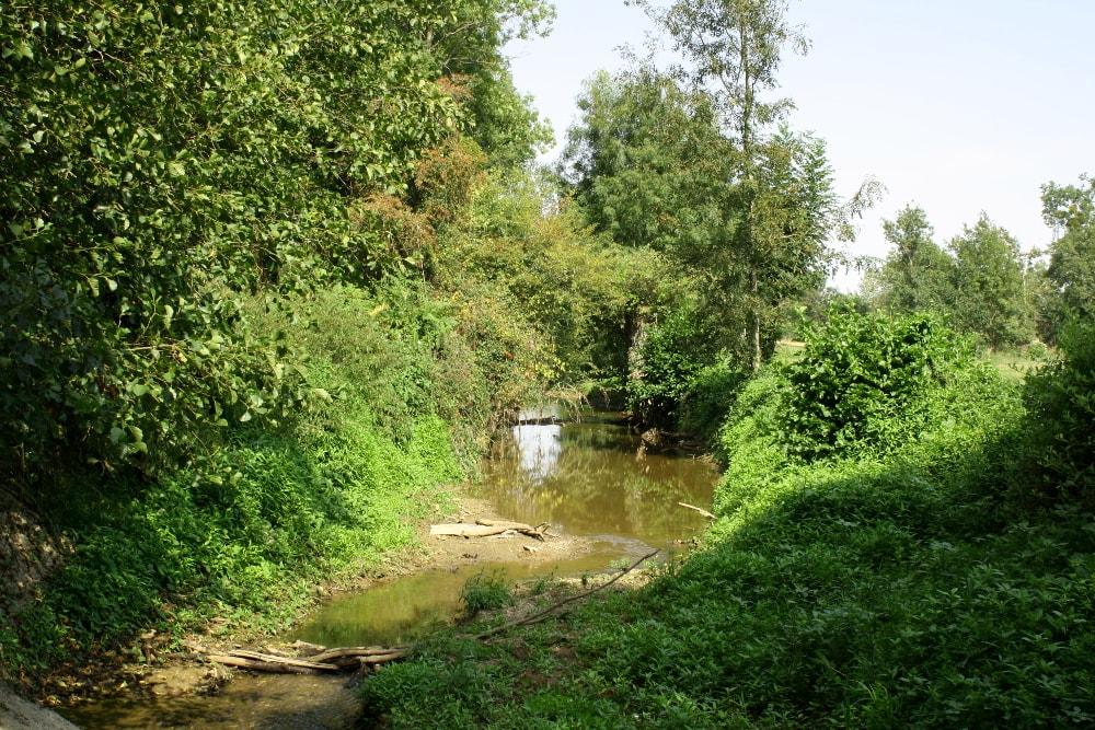 Manque d'eau sur la rivière Vendée