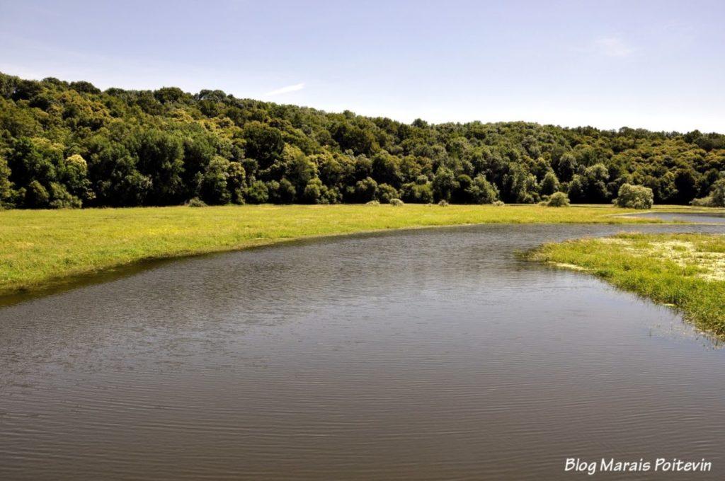 a rivière Vendée pont de la Taillé