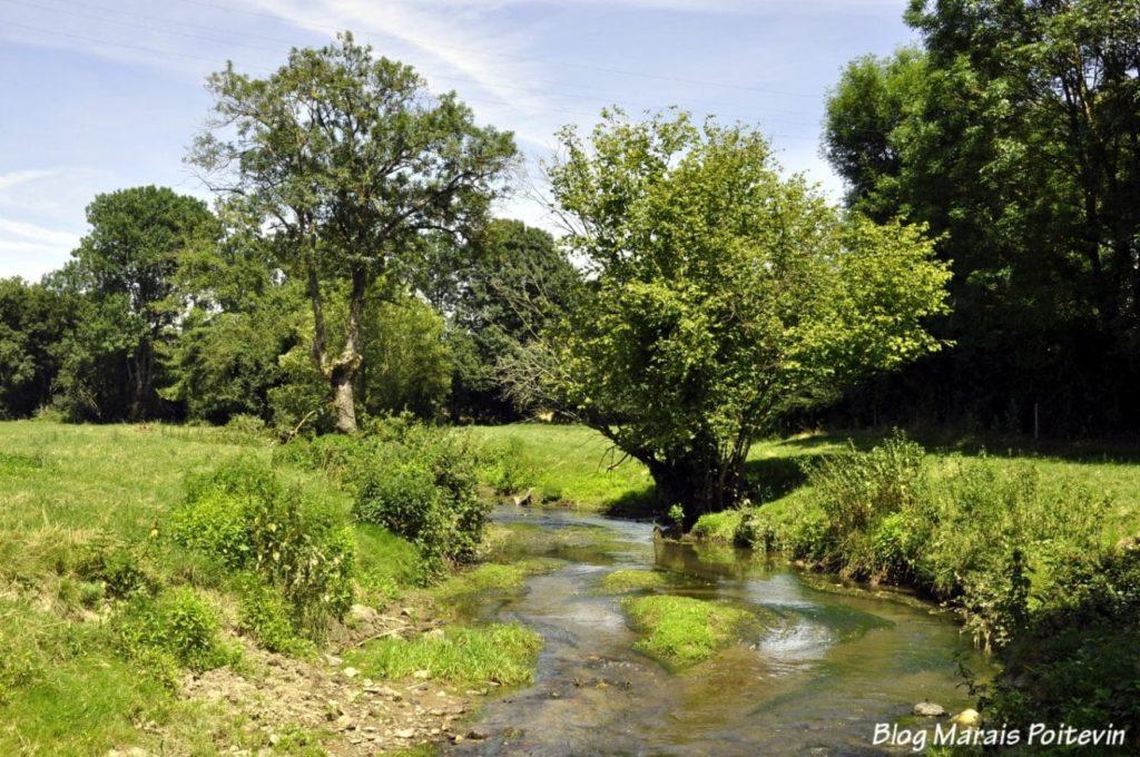 La rivière Vendée après les sources