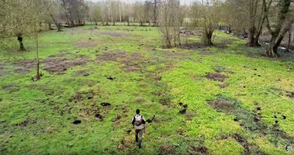 plan drone marais poitevin chevreuil
