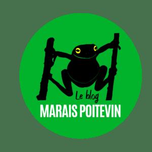 logo blog grenouille rond fond vert- v5