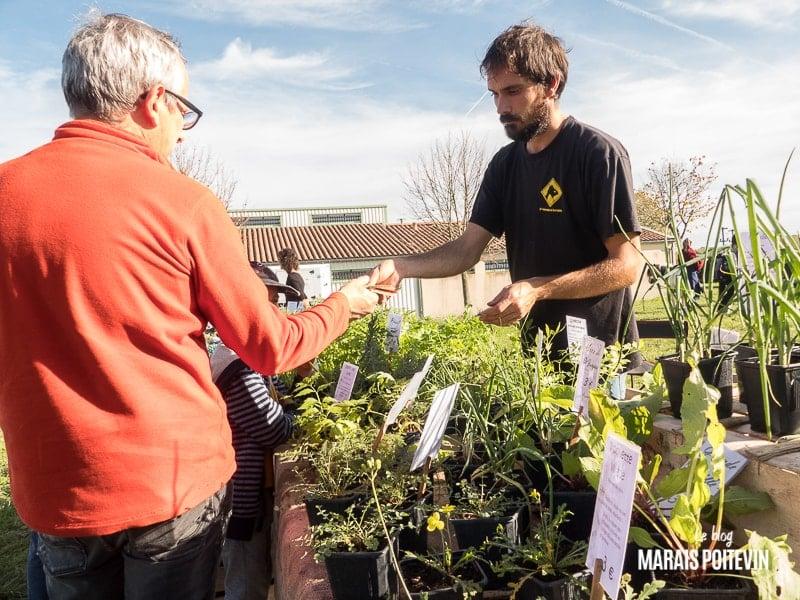 fete du frene tetard amuré octobre 2019 vente de plantes permaculture