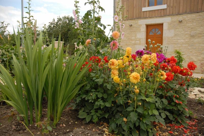 jardin avec fleurs gite marais poitevin la grange