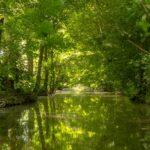 Cet été, découvrez les plus beaux endroits du Marais Poitevin en camping-car